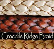 Crocodile Ridge Braid