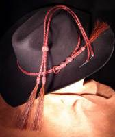 Hatband and chin straps